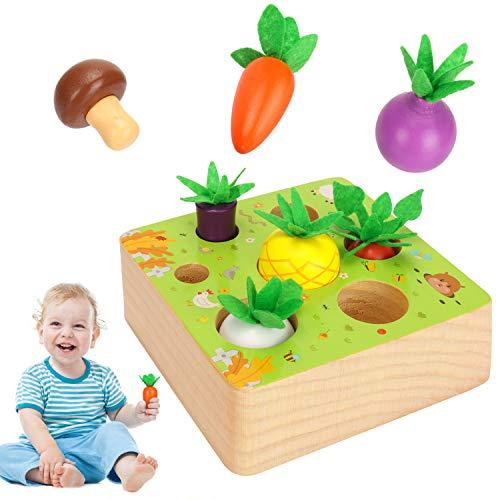 Sinwind Montessori Juguetes Niños...