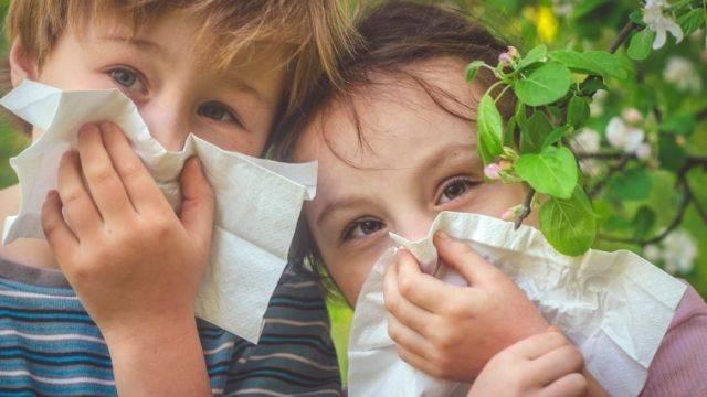 niños en el campo con alergia
