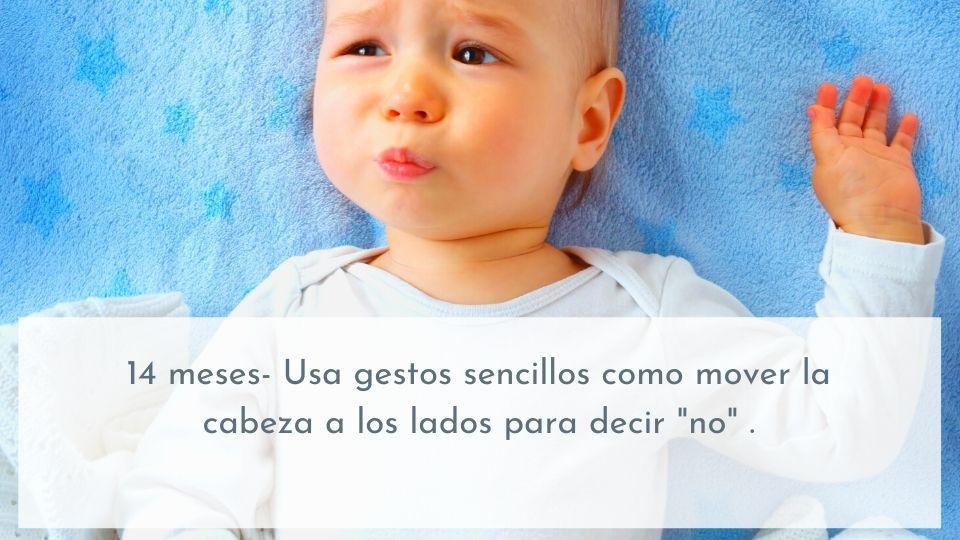 Desarrollo del lenguaje 14 meses