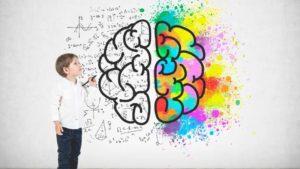 niño dibujando un cerebro