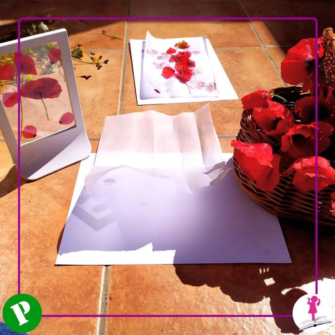 preparación actividades con flores