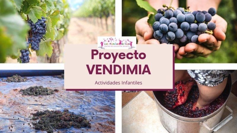 Fotos de proyecto Vendimia